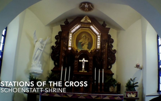 Pray along! Stations of the Cross in the Shrine