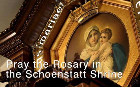 Pray along!                            Live Rosary in the Shrine